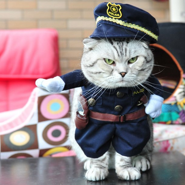 Policeman Uniform Cosplay Costume for Cats