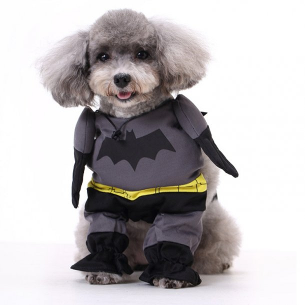 Puppy's Batman Cosplay Clothing Costume